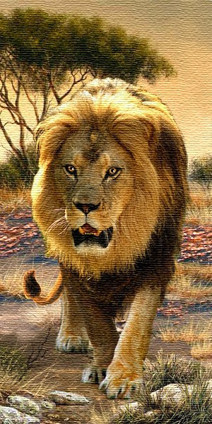 Lion Wild Life Tapestry Wall Hanging - Animal Picture, 16in x 32in