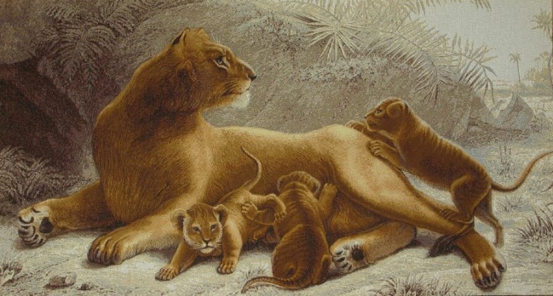 Lioness Wild Life Tapestry Wall Hanging - Animal Picture, 38in x 22in