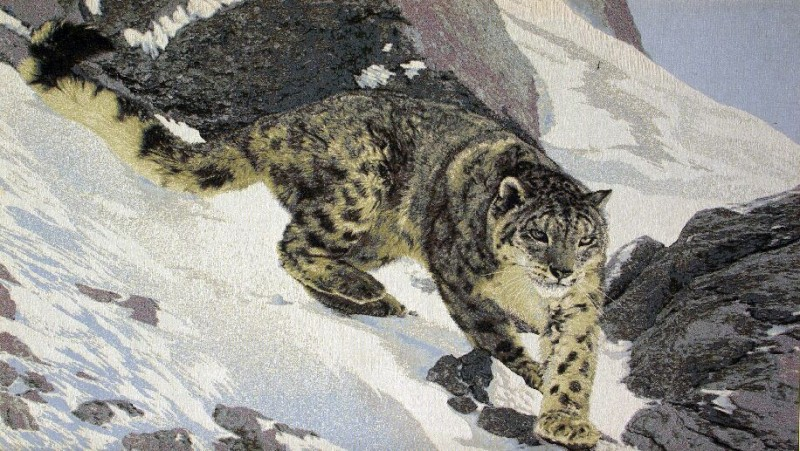Snow Leopard Wild Life Tapestry Wall Hanging - Animal Picture, 52in x 30in