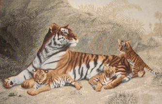 Tigers Wild Life Tapestry Wall Hanging - Animal Picture, 40in x 20in